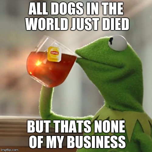 But Thats None Of My Business | ALL DOGS IN THE WORLD JUST DIED BUT THATS NONE OF MY BUSINESS | image tagged in memes,but thats none of my business,kermit the frog | made w/ Imgflip meme maker