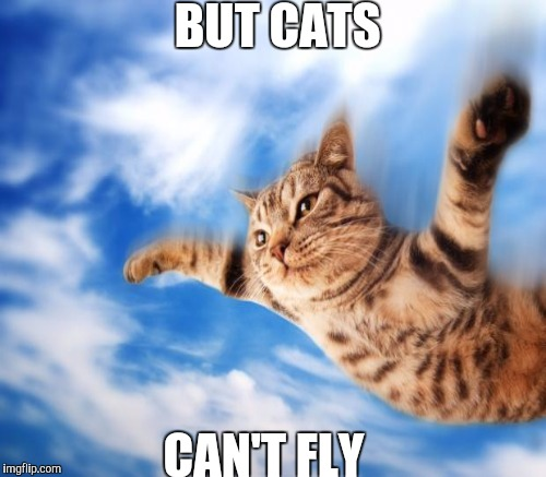 BUT CATS CAN'T FLY | made w/ Imgflip meme maker