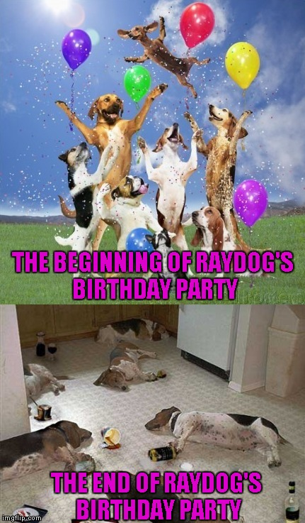 Happy Birthday to me, Happy Birthday to me...Happy Birthday dear Raydog...Happy birthday to me. | THE BEGINNING OF RAYDOG'S BIRTHDAY PARTY THE END OF RAYDOG'S BIRTHDAY PARTY | image tagged in raydog's birthday,raydog,memes,happy birthday,funny,birthday party | made w/ Imgflip meme maker
