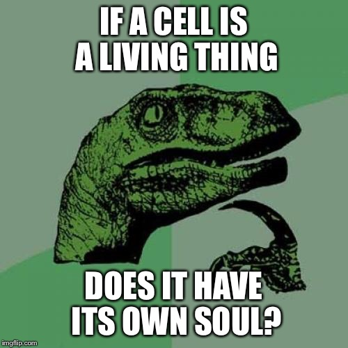 Philosoraptor Meme | IF A CELL IS A LIVING THING DOES IT HAVE ITS OWN SOUL? | image tagged in memes,philosoraptor | made w/ Imgflip meme maker