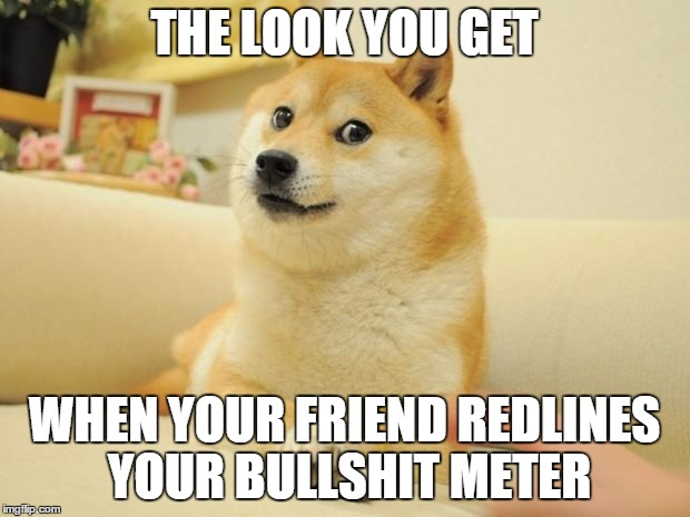 Doge 2 | THE LOOK YOU GET WHEN YOUR FRIEND REDLINES YOUR BULLSHIT METER | image tagged in memes,doge 2 | made w/ Imgflip meme maker
