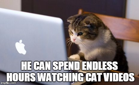 HE CAN SPEND ENDLESS HOURS WATCHING CAT VIDEOS | made w/ Imgflip meme maker