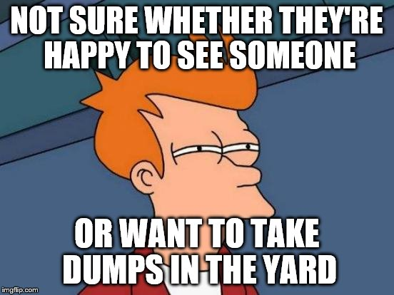 Futurama Fry Meme | NOT SURE WHETHER THEY'RE HAPPY TO SEE SOMEONE OR WANT TO TAKE DUMPS IN THE YARD | image tagged in memes,futurama fry | made w/ Imgflip meme maker