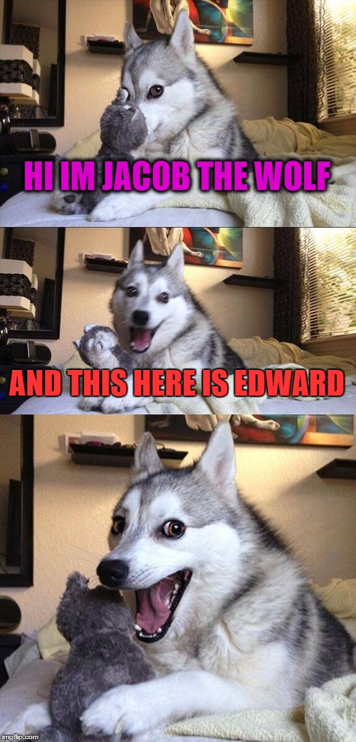 Bad Pun Dog Meme |  HI IM JACOB THE WOLF; AND THIS HERE IS EDWARD | image tagged in memes,bad pun dog | made w/ Imgflip meme maker