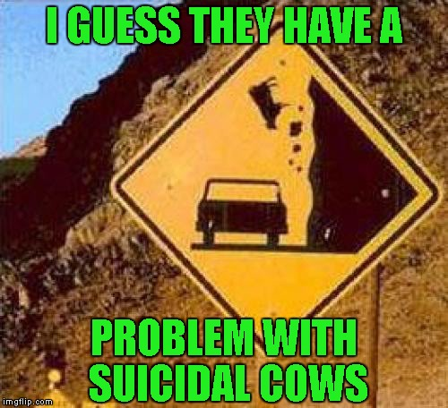 Does your insurance cover falling cow disease? | I GUESS THEY HAVE A PROBLEM WITH SUICIDAL COWS | image tagged in falling cows,funny signs,funny,memes,funny animals,road signs | made w/ Imgflip meme maker