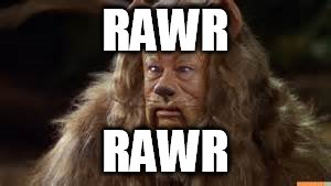 RAWR RAWR | made w/ Imgflip meme maker