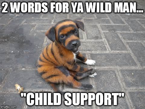 "2 WORDS FOR YA WILD MAN... ""CHILD SUPPORT"" 