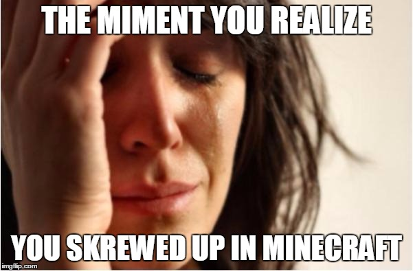 Minecraft meme |  THE MIMENT YOU REALIZE; YOU SKREWED UP IN MINECRAFT | image tagged in minecraft meme | made w/ Imgflip meme maker