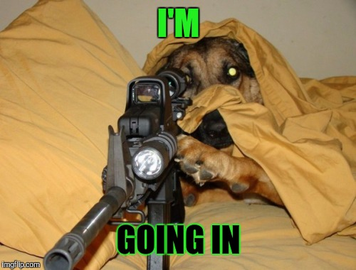 Sniper Dog | I'M GOING IN | image tagged in sniper dog | made w/ Imgflip meme maker