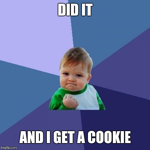 Success Kid Meme | DID IT AND I GET A COOKIE | image tagged in memes,success kid | made w/ Imgflip meme maker