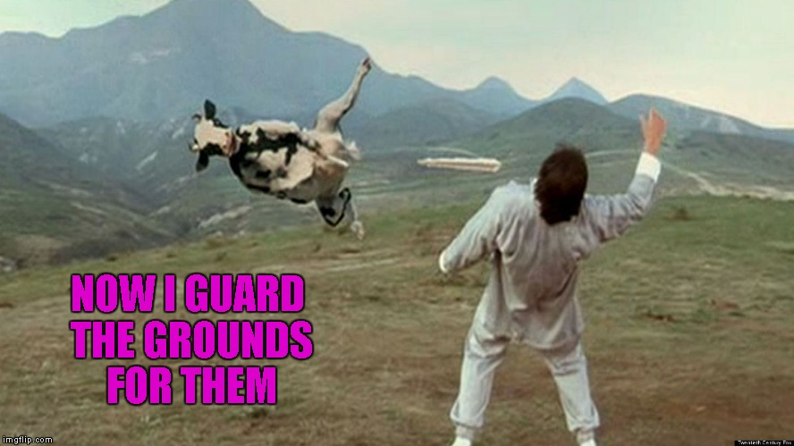 NOW I GUARD THE GROUNDS FOR THEM | made w/ Imgflip meme maker
