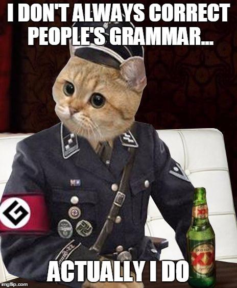 most interesting cat imgflip