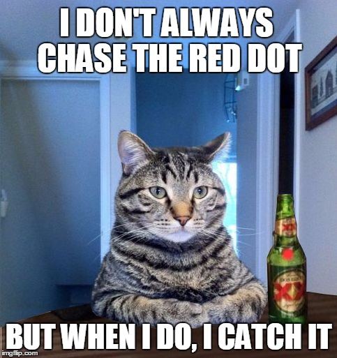 The Most Interesting Cat In The World |  I DON'T ALWAYS CHASE THE RED DOT; . BUT WHEN I DO, I CATCH IT | image tagged in most interesting cat in the world,memes,red dot,cats,the most interesting man in the world | made w/ Imgflip meme maker
