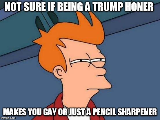 Futurama Fry Meme | NOT SURE IF BEING A TRUMP HONER MAKES YOU GAY OR JUST A PENCIL SHARPENER | image tagged in memes,futurama fry | made w/ Imgflip meme maker
