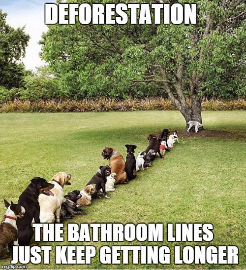 Bathroom Lines  | DEFORESTATION THE BATHROOM LINES JUST KEEP GETTING LONGER | image tagged in bathroom lines | made w/ Imgflip meme maker