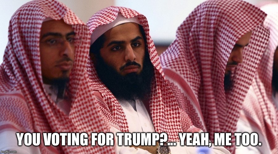 Allah Board The Trump Train! | YOU VOTING FOR TRUMP?... YEAH, ME TOO. | image tagged in trump 2016,confused muslim girl | made w/ Imgflip meme maker
