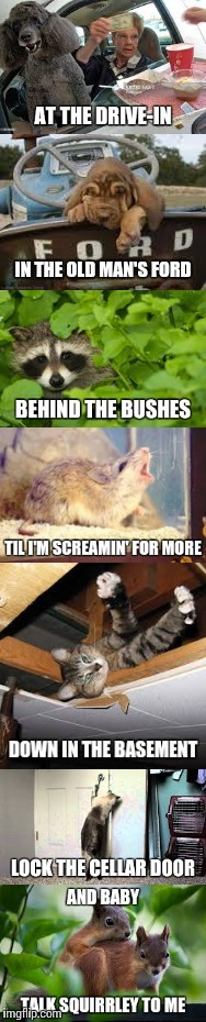 Poison - Talk Dirty to Me | image tagged in cute animals,poison,squirrels,song lyrics,meme,animal meme | made w/ Imgflip meme maker