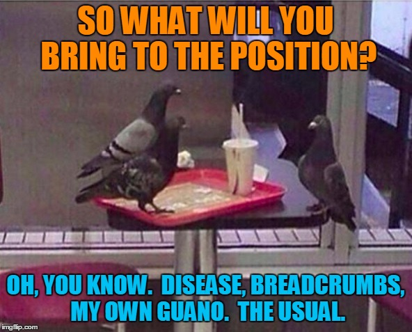 SO WHAT WILL YOU BRING TO THE POSITION? OH, YOU KNOW.  DISEASE, BREADCRUMBS, MY OWN GUANO.  THE USUAL. | made w/ Imgflip meme maker