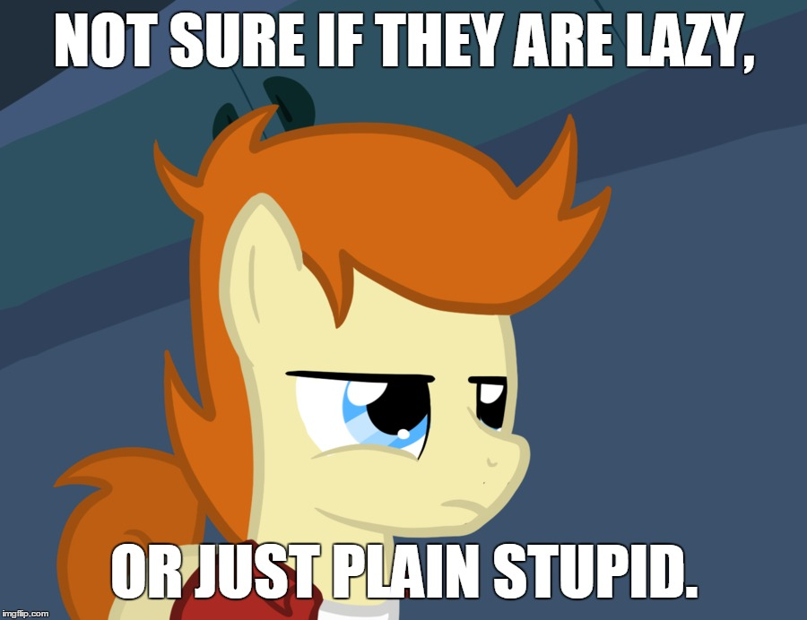 NOT SURE IF THEY ARE LAZY, OR JUST PLAIN STUPID. | image tagged in futurama fry pony | made w/ Imgflip meme maker