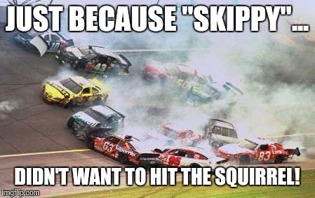 "Because Race Car Meme | JUST BECAUSE ""SKIPPY""... DIDN'T WANT TO HIT THE SQUIRREL! 