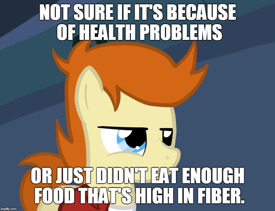NOT SURE IF IT'S BECAUSE OF HEALTH PROBLEMS OR JUST DIDN'T EAT ENOUGH FOOD THAT'S HIGH IN FIBER. | image tagged in futurama fry pony | made w/ Imgflip meme maker