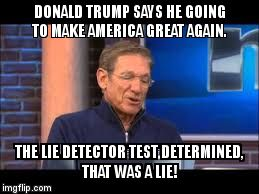 DONALD TRUMP SAYS HE GOING TO MAKE AMERICA GREAT AGAIN. THE LIE DETECTOR TEST DETERMINED, THAT WAS A LIE! | image tagged in donald trump | made w/ Imgflip meme maker